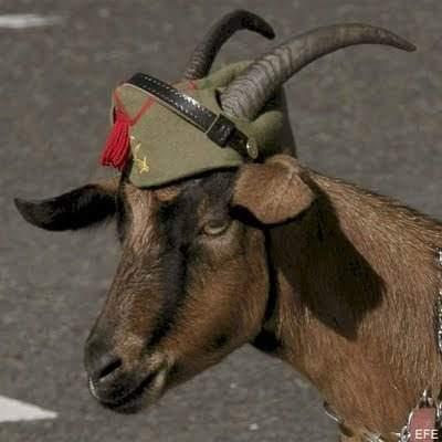 """Pablo"", mascota del Tercio. Sincero homenaje al hijo del terrorista del FRAP, Iglesias."