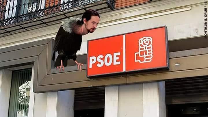 El 'buitre' Iglesias sobre la carroña política del PSOE.