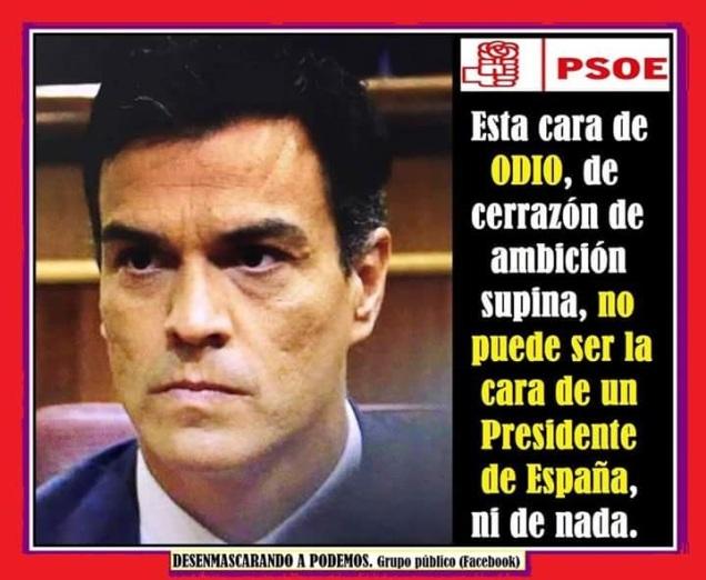 Pedro Sánchez: viva imagen de indigencia intelectual, cual Zapatero descolocado y gafe.