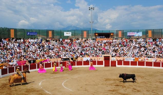 Resultado de imagen de ceret toros